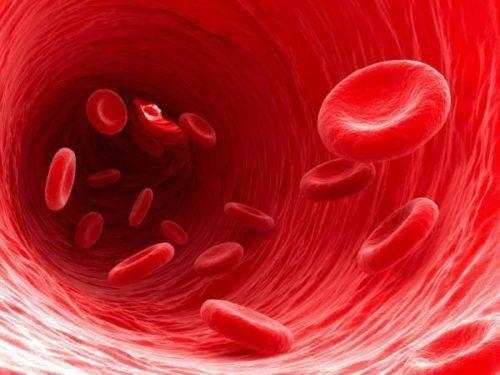 Продукты, разжижающие крови при беременности