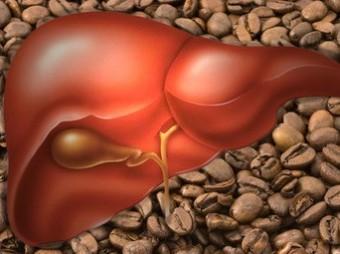 Как влияет кофе на печень