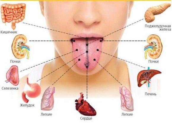 проблемы с органами пищеварения
