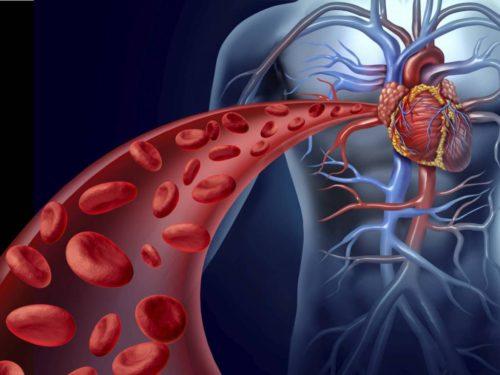 Препараты и таблетки разжижающие кровь и препятствующие тромбообразованию