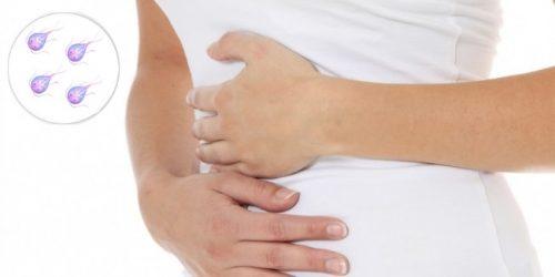 Лечение лямблий у беременных 48