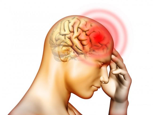 Могут ли глисты попасть в мозг