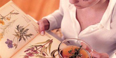 Миниатюра к статье Травы для очищения и укрепления сосудов: рецепты