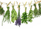 Миниатюра к статье Очищение кишечника слабительным сбором трав в домашних условиях