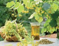 Миниатюра к статье Травы от повышенного холестерина в крови и очищающие сосуды