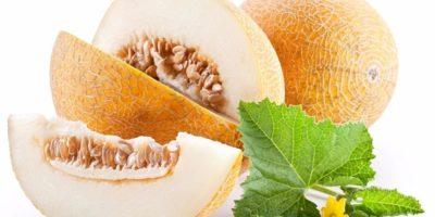 Миниатюра к статье Натуральное слабительное для кишечника: дыня