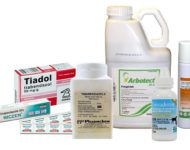 Миниатюра к статье Тиабендазол для лечения паразитов, инструкция по применению, аналоги, отзывы