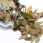 Чистка сосудов лавровым листом в домашних условиях: отзывы, рецепты