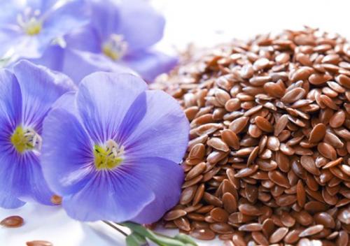 Семена льна для очищения кишечника: как принимать