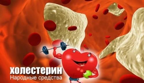 Народные средства от холестерина
