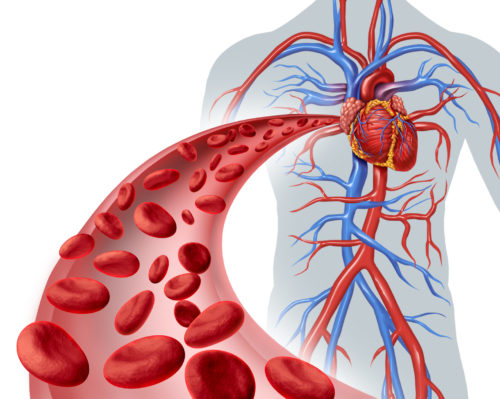 Капельницы для очищения крови, как чистят кровь в больнице