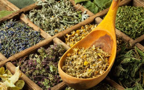 Печеночный сбор для очистки печени, состав чая из трав