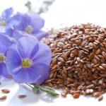 Семя льна при запорах, как принимать