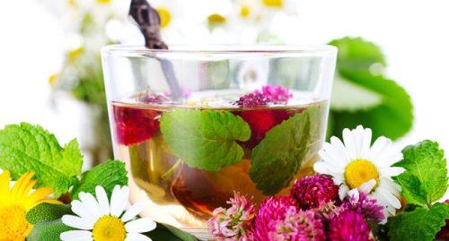 лечебный чай для почек