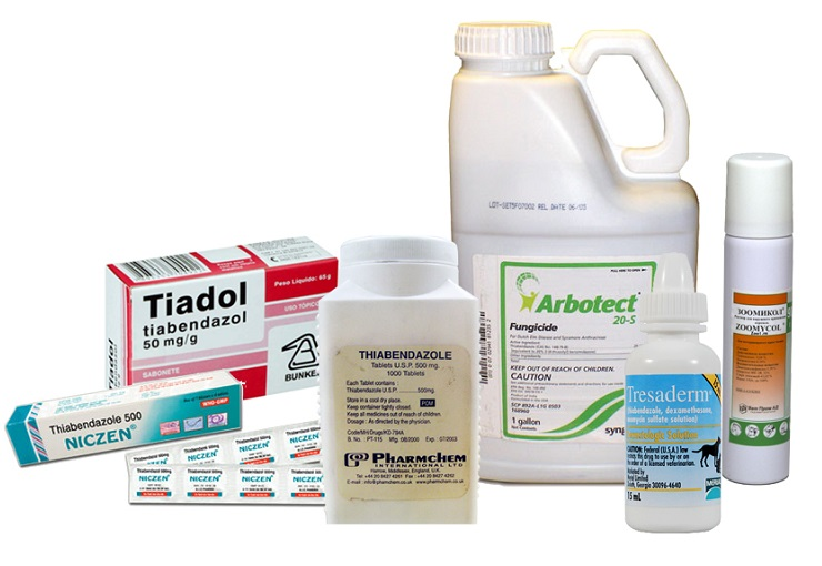 Тиабендазол инструкция по применению — paraziti