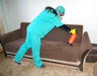 Миниатюра к статье Как быстро избавиться от клопов в домашних условиях: лучшие средства