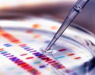 Миниатюра к статье Детоксикация организма - где сдать анализы
