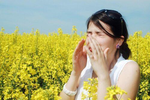 Миниатюра к статье Надежные средства от аллергического ринита в Farmani