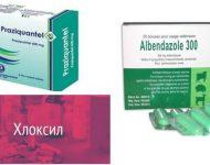 Миниатюра к статье Хлоксил для лечения паразитов, инструкция по применению, отзывы
