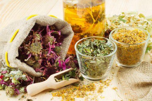 Миниатюра к статье Отхаркивающие травы для очищения легких и выведения мокроты