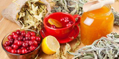 Миниатюра к статье Клюква с чесноком и медом: чистка сосудов и укрепление иммунитета