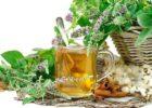 Миниатюра к статье Слабительные травы от запоров: лучшие средства