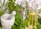 Миниатюра к статье Чистка и восстановление печени полезными травами