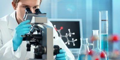 Миниатюра к статье Эхинококкоз: симптомы, лечение и жизненный цикл у человека