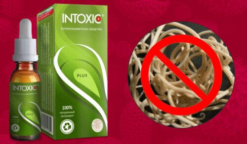 Миниатюра к статье Intoxic: инструкция по применению, реальные отзывы покупателей