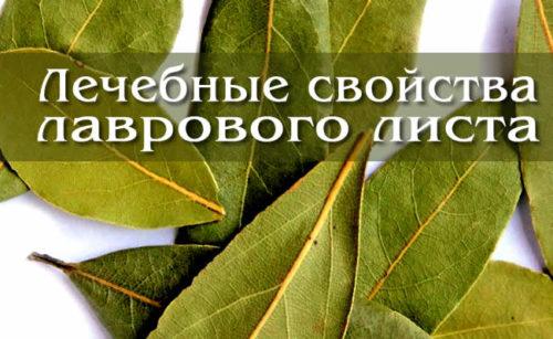 Как очистить суставы лавровым листом отзывы гидрокортизон в сустав