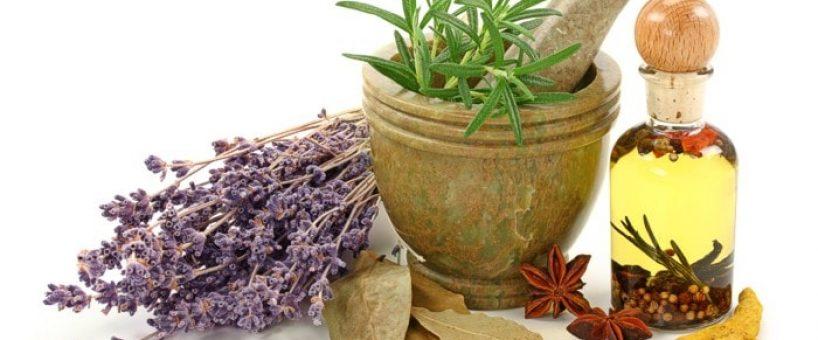 Миниатюра к статье Травы для разжижения крови и укрепления стенок сосудов
